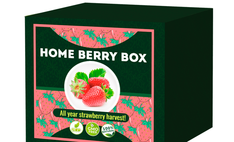 Che cosa è il Home Berry Box? Home Berry Box