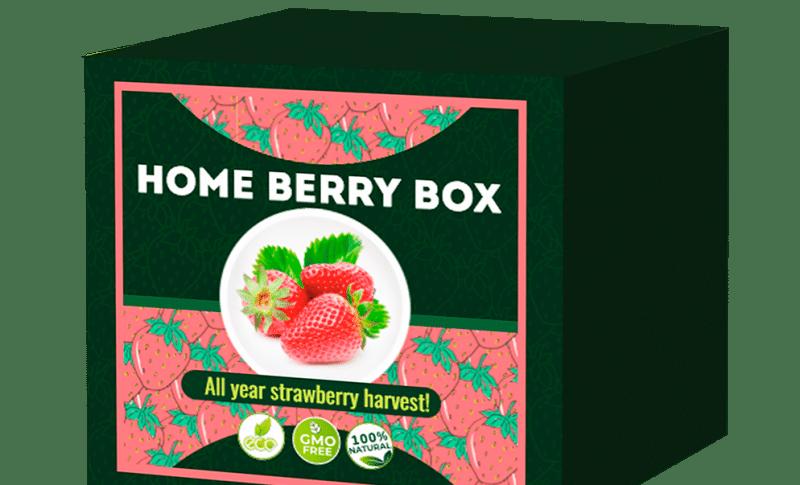 Co to jest? Skutki uboczne. Efekty Home Berry Box