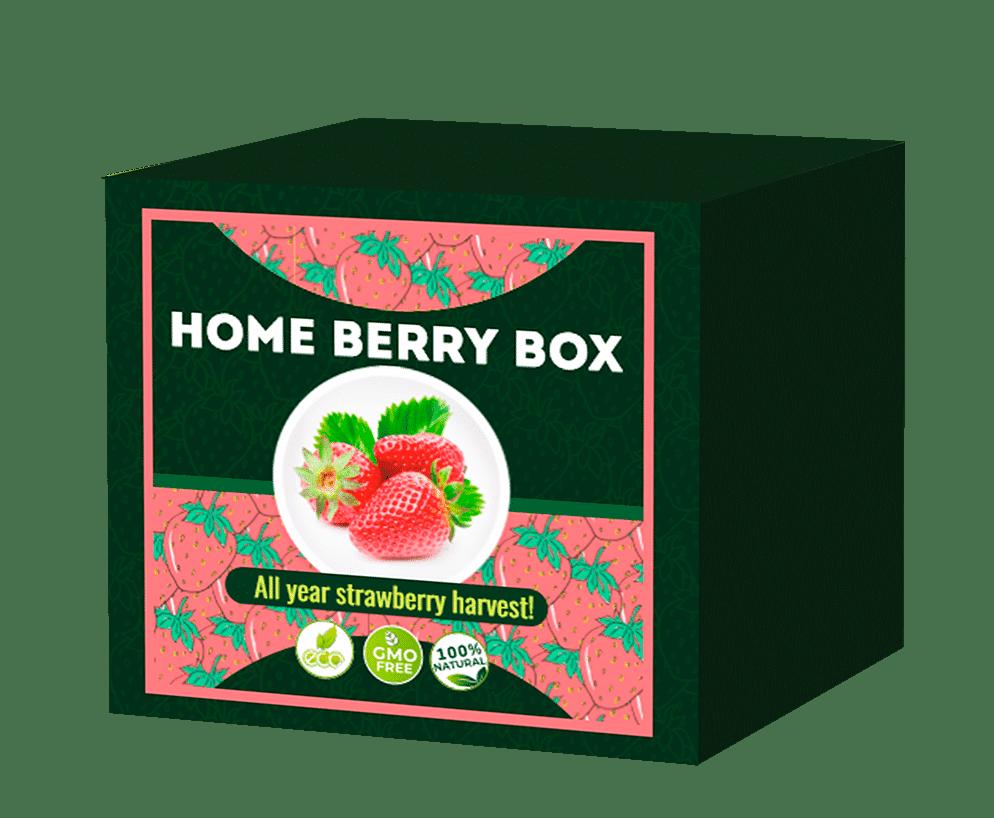 Home Berry Box