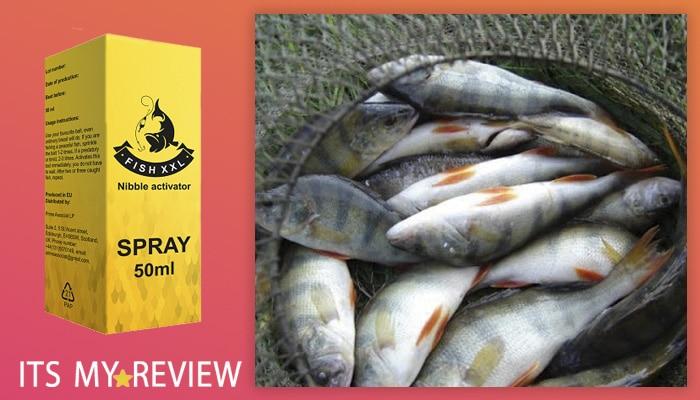 Fish XXL Istruzioni. Come si usa? Come utilizzare Fish XXL?